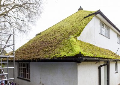 Before Roof Cleaning & Moss Removal